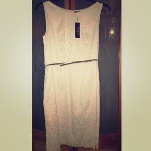 NWT! Worthington Dress w/Belt